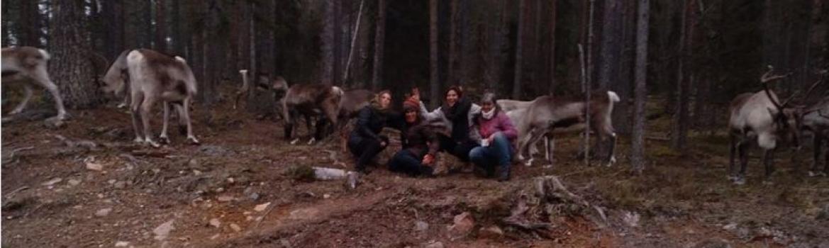 El proyecto Laponias Conectadas llega a su fin tras doce meses de intercambios de experiencias entre emprendedores de Soria, Teruel y Finlandia