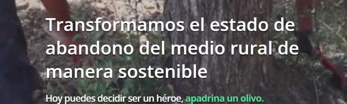 El proyecto turolense 'Apadrina un olivo' abrirá la jornada de innovación en El Burgo